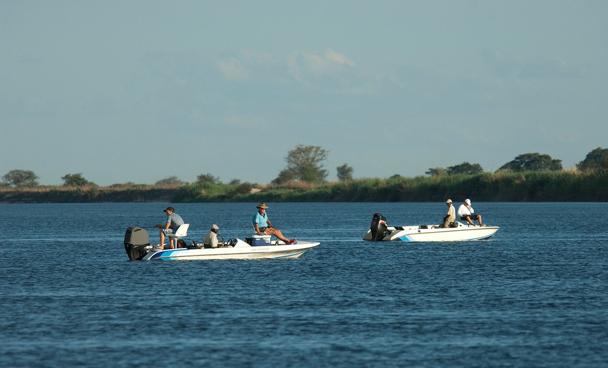 Motorboats on Zambezi River from Shackleton's Fishing Camp