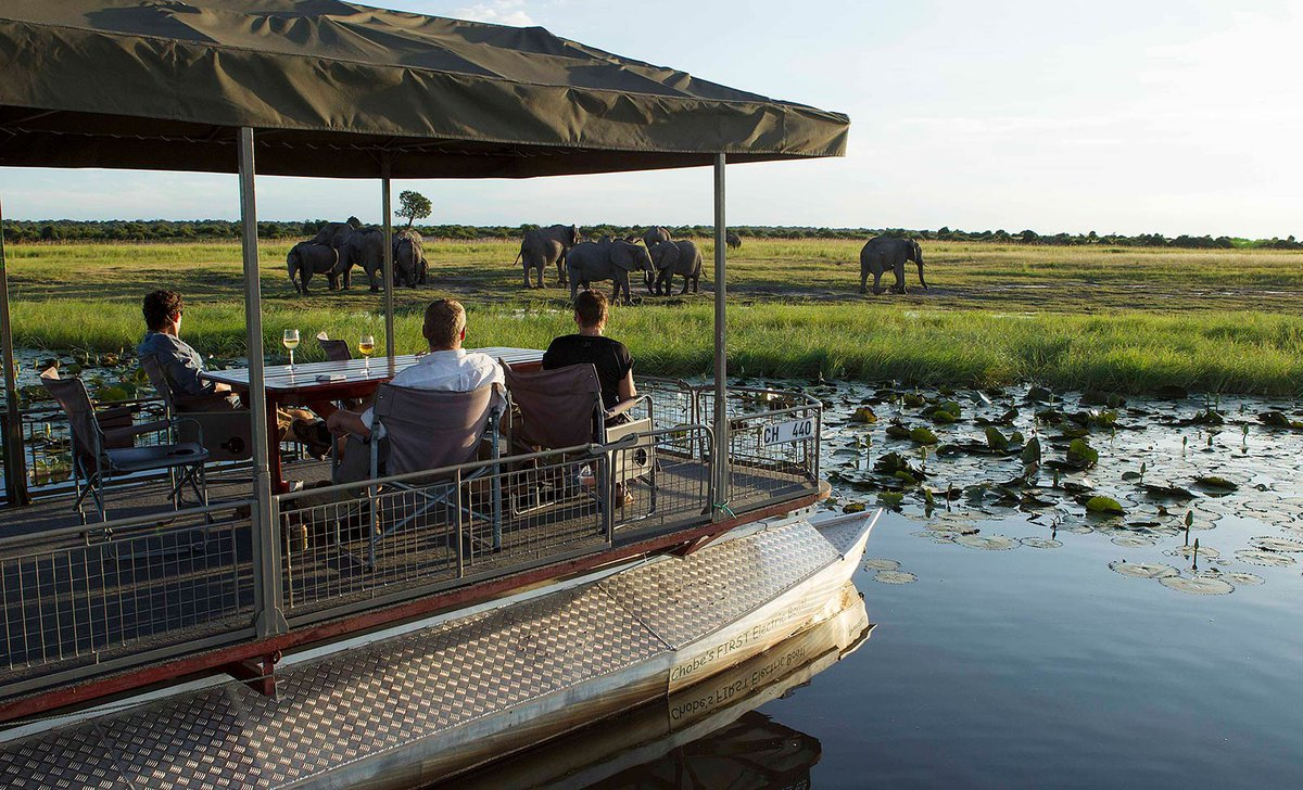 Chobe Game Lodge boat with guests near elephant herd in Chobe National Park