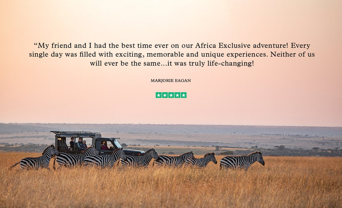 Zebras near jeep on game drive in Masai Mara with TrustPilot five star rating