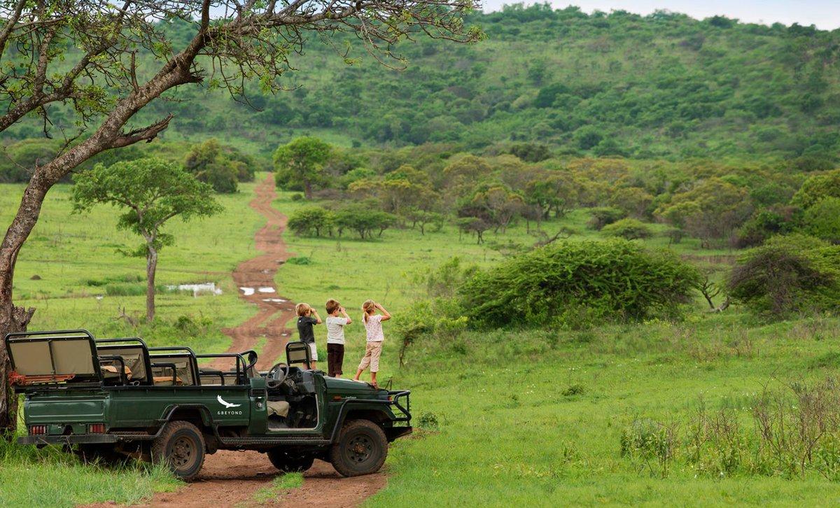 kids on game drive stood on car looking into distance
