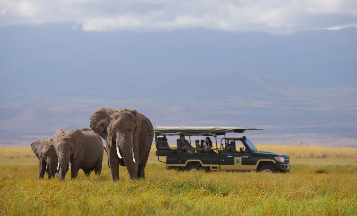 Why should I book my safari holiday with Africa Exclusive?