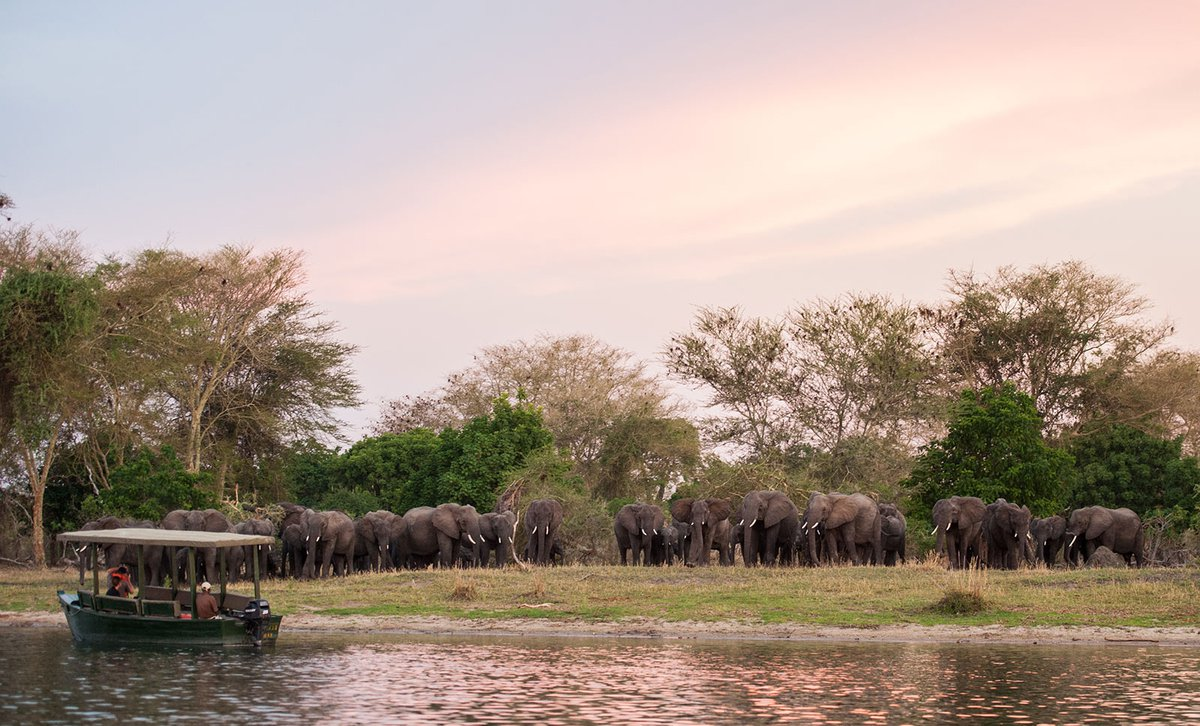 Malawi: Secret Safari