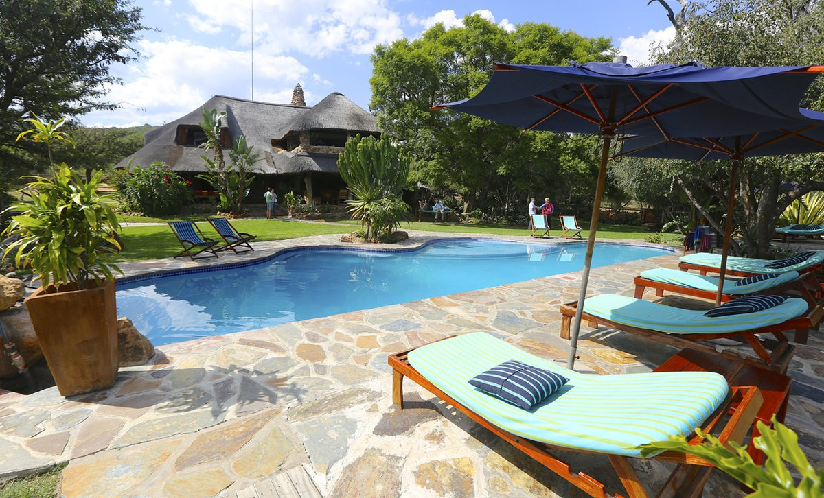 Pool and sun loungers at Ant's Nest safari lodge in Waterberg Private Reserve