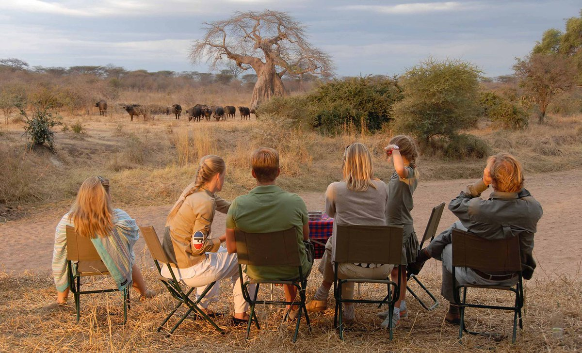 Family sundowners watching elephant in Ruaha