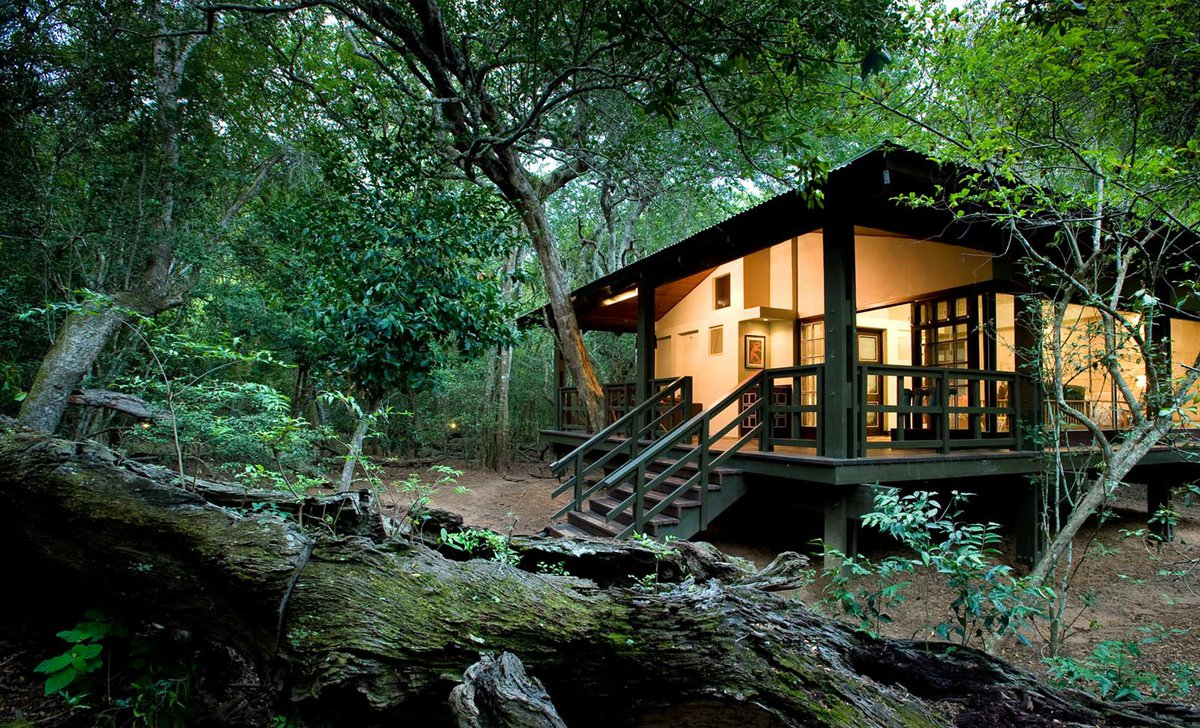 exterior-view-phinda-forest-lodges-south-africa
