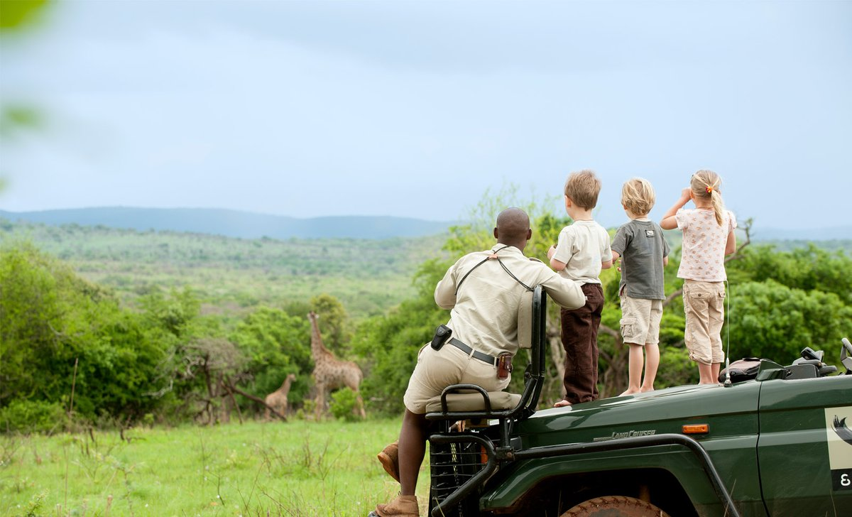 giraffes-children-with-guide-game-drive-phinda-private-reserve