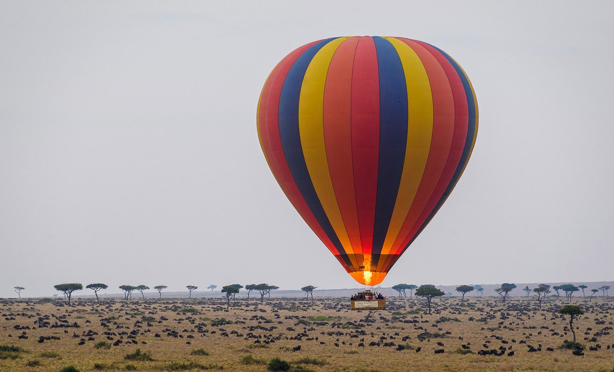 balloon-ride-over-migration-governors-camp-56739.jpg