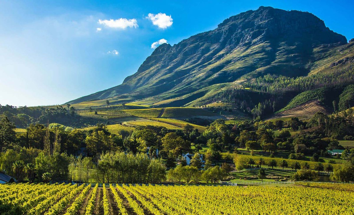Cape winelands scenery in South Africa