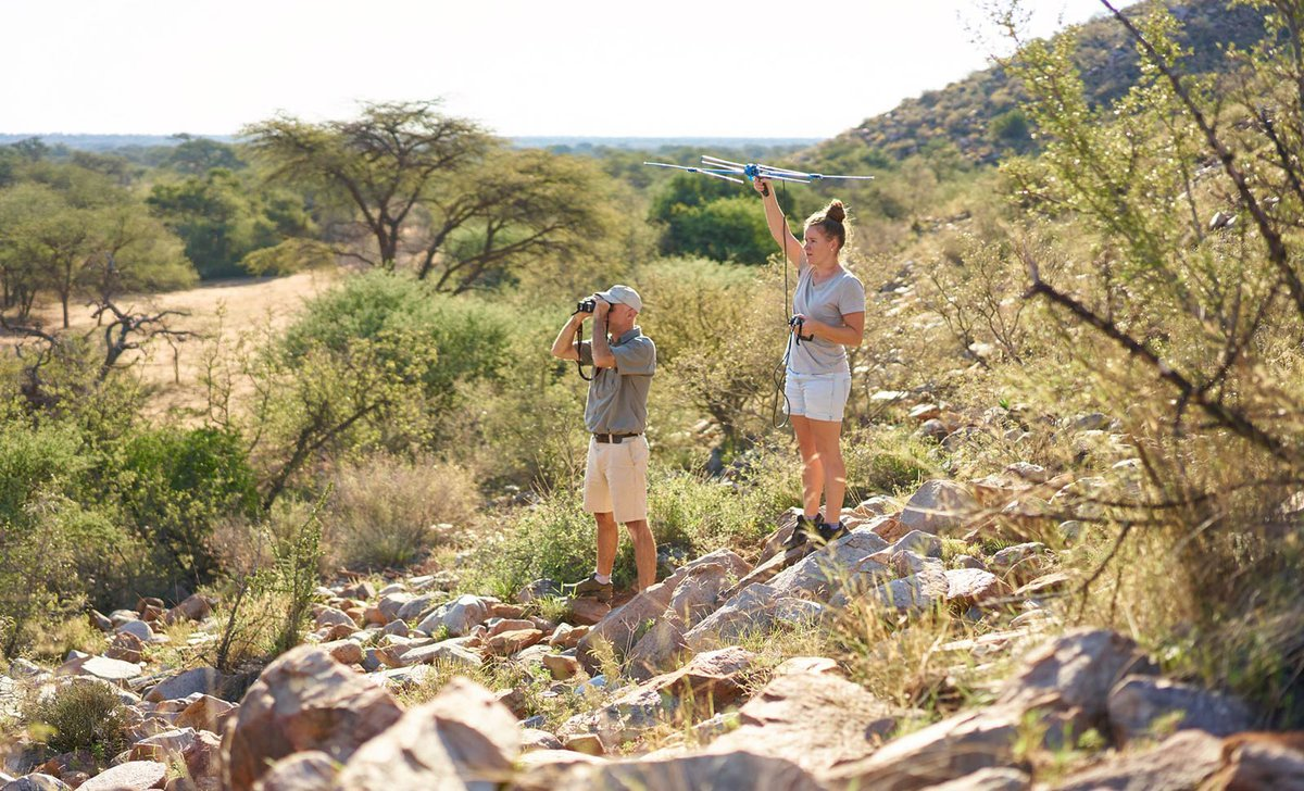 Conservation wildlife tracking excursion