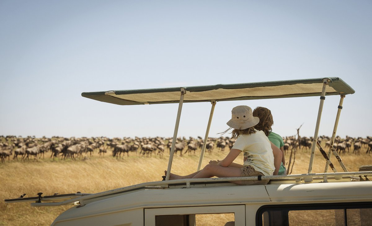 Girls watching Great Migration from top of safari vehicle