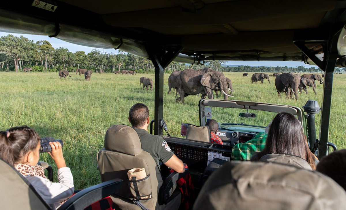 Family game drive near huge herd of elephants