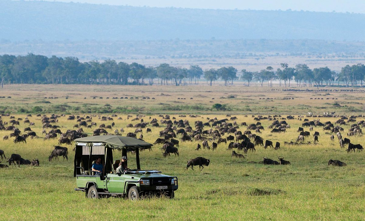 game-drive-in-the-migration-mara-plains-camp-89611.jpg