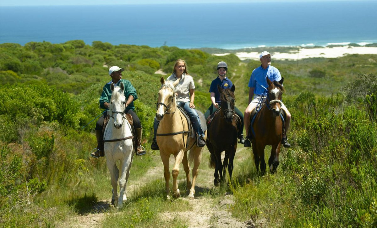 horseriding along the garden route