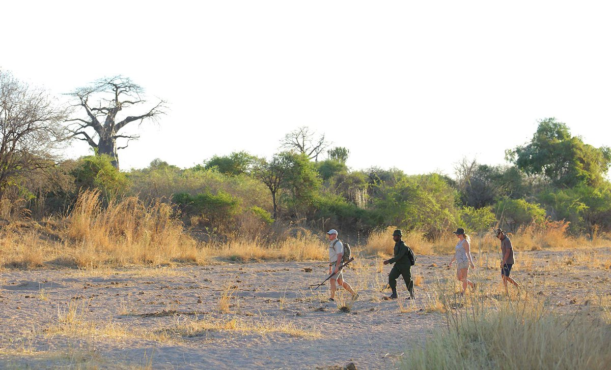 jabali-private-house-walking-safari-ruaha-19343.jpg