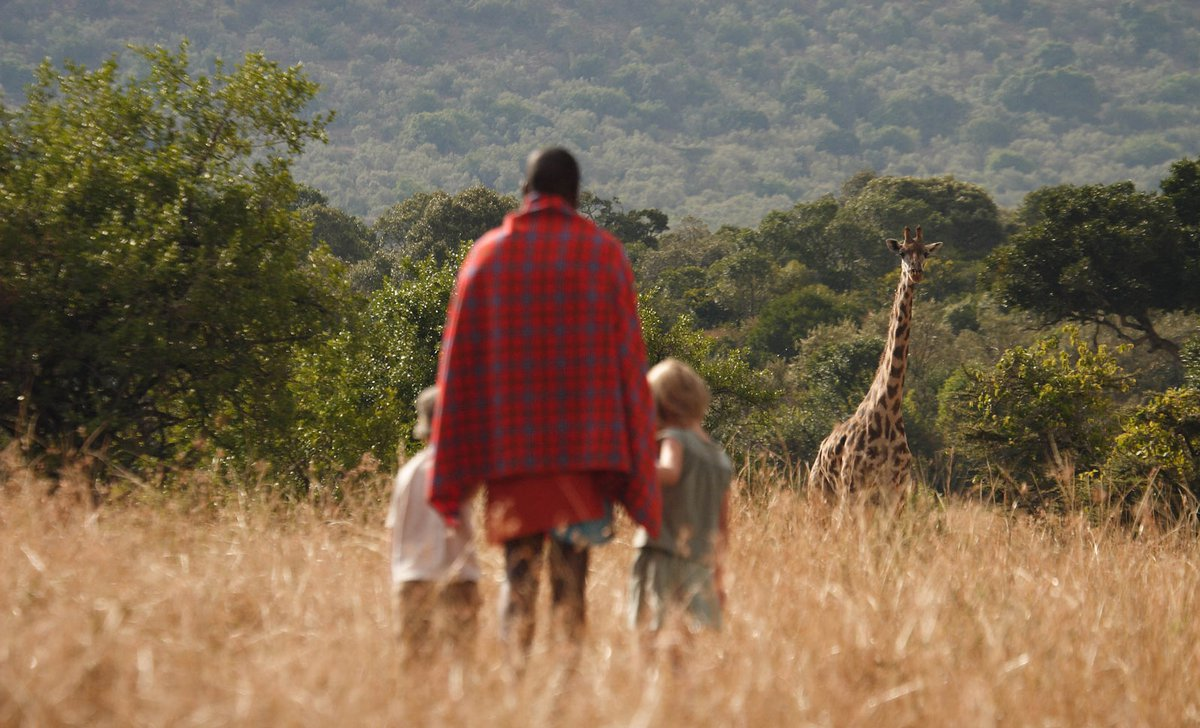 Maasai guide showing children giraffe on walking safari