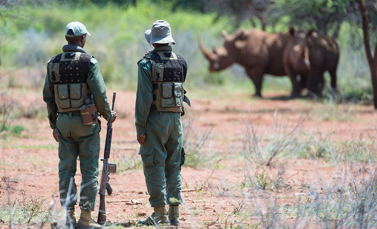 Rhino conservation rangers in Lapalala