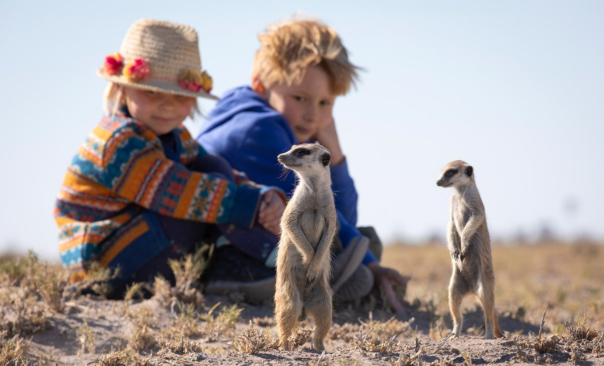 Children up close with meerkats standing up tall