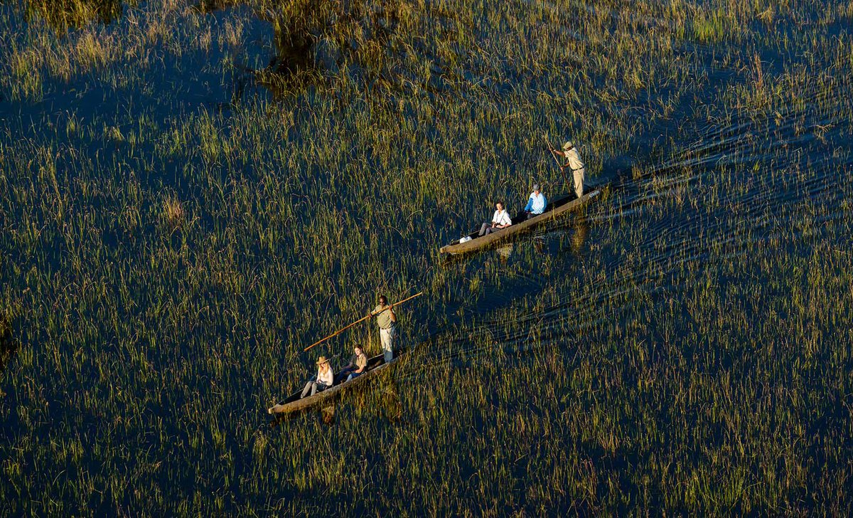 Arial view of mokoro canoes