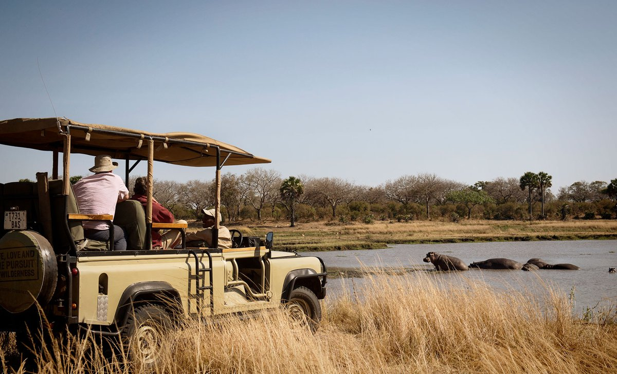 Game drive near hippo, Chada Camp, Katavi.