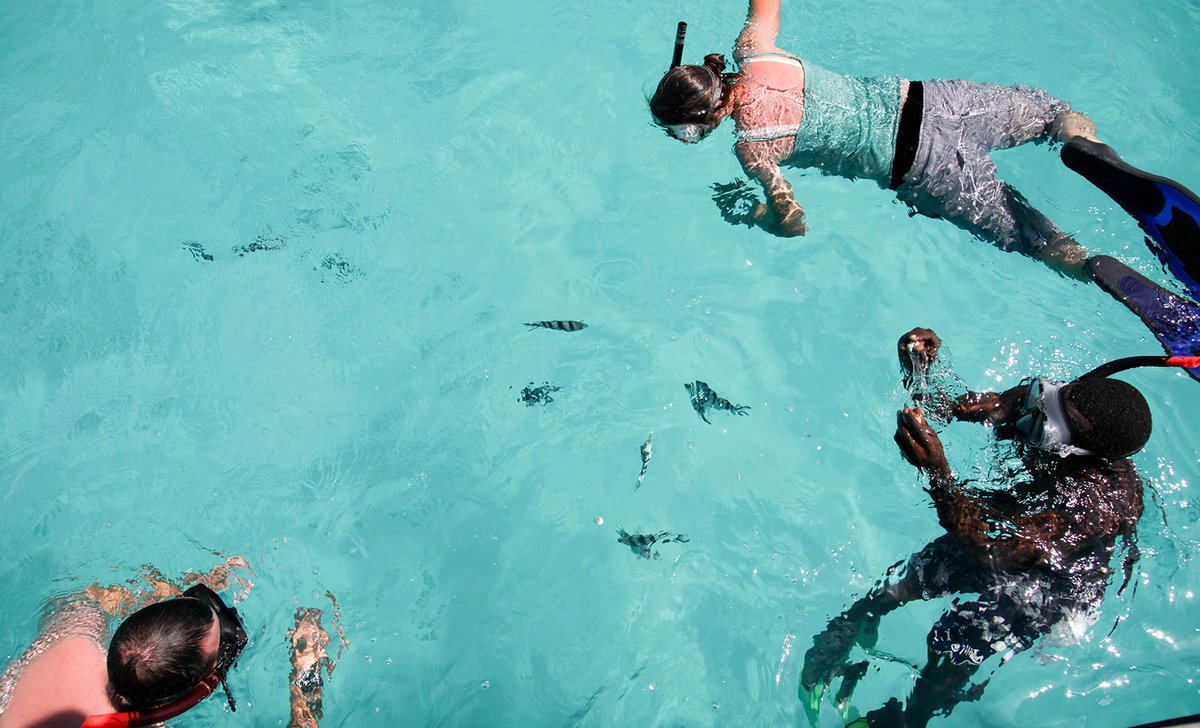 Guests snorkelling at Matemwe.