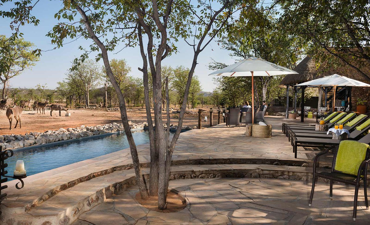 people-on-deck-waterhole-antelope-Ongava-Tented-Camp-Namibia
