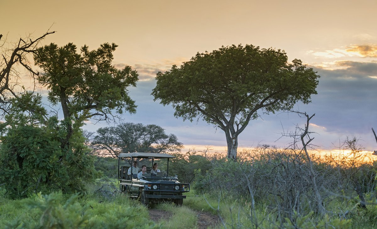 Game drive at dusk in Madikwe Game Reserve