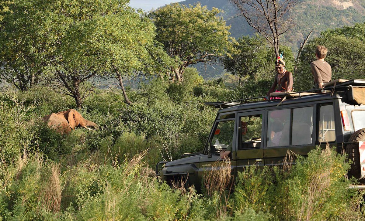 Family game drive watching elephant near Sarara Camp