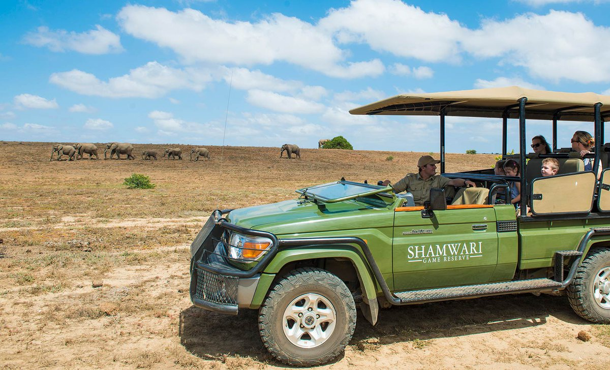 shamwari-kids-safari-game-drive-11443.jpg