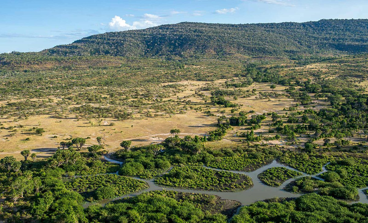 Aerial photo of Selous Reserve landscape