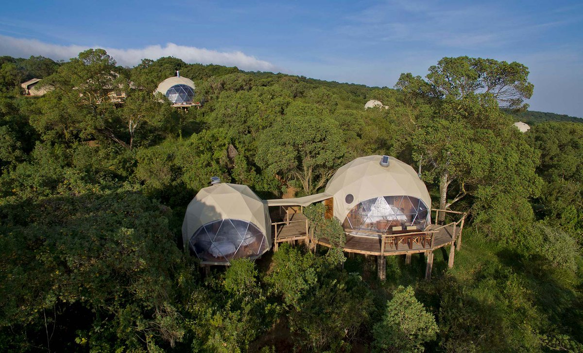 Accommodation in treetops